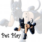 PetPlay – Juegos de Roles